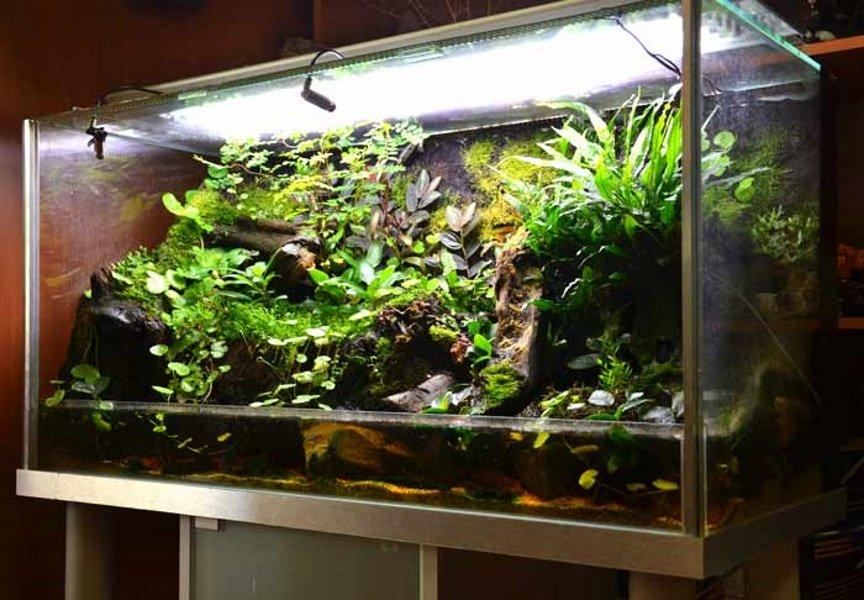 Транспортировка аквариума